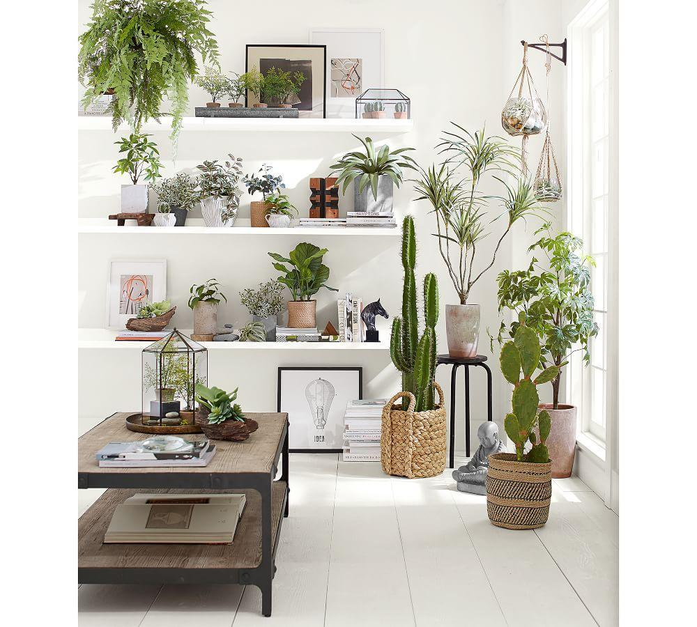 Faux Potted Mini Southern Maiden Hair Fern