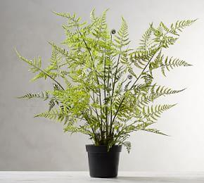Faux Potted Tree Fern