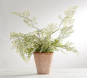 Faux Potted Maiden Hair Fern Houseplant