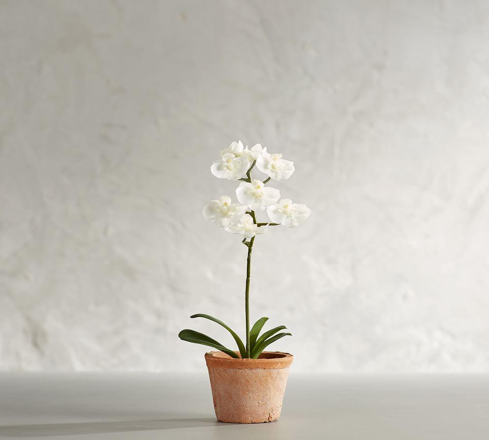 Mini Faux Potted Orchid