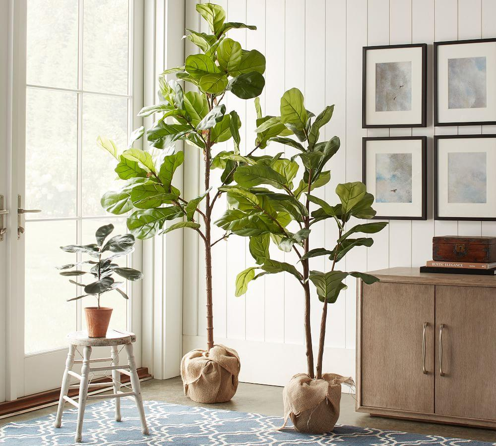 Faux Potted Fiddle Leaf Trees Pottery Barn Ca