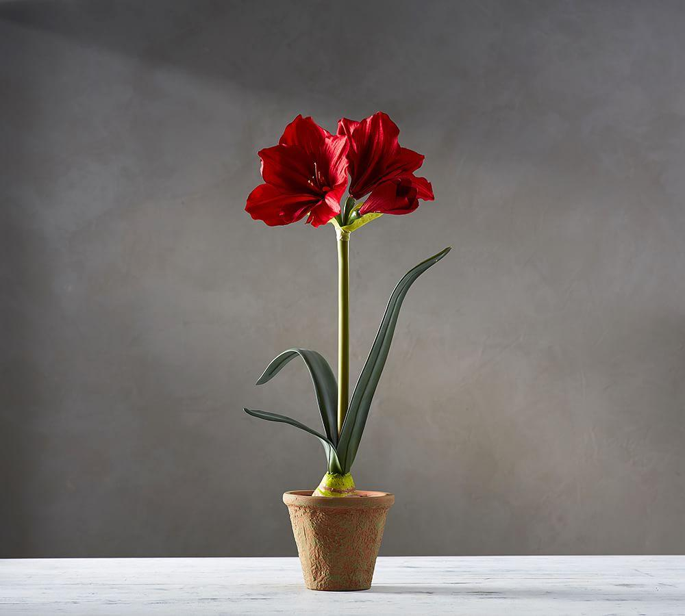 Faux Potted Amaryllis Collection