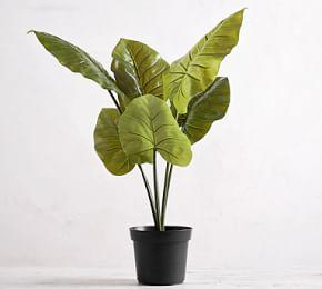 Faux Potted Philodendron Houseplant
