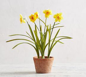 Faux Potted Daffodil