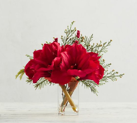 Faux Amaryllis Composed Arrangement - Red