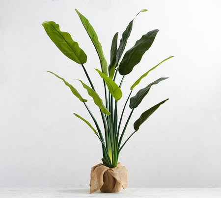 Faux Potted Bird of Paradise Palm Tree