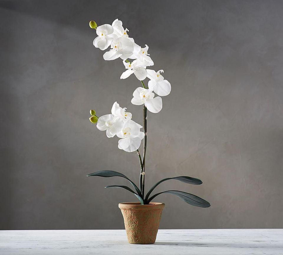 Faux Potted Orchid