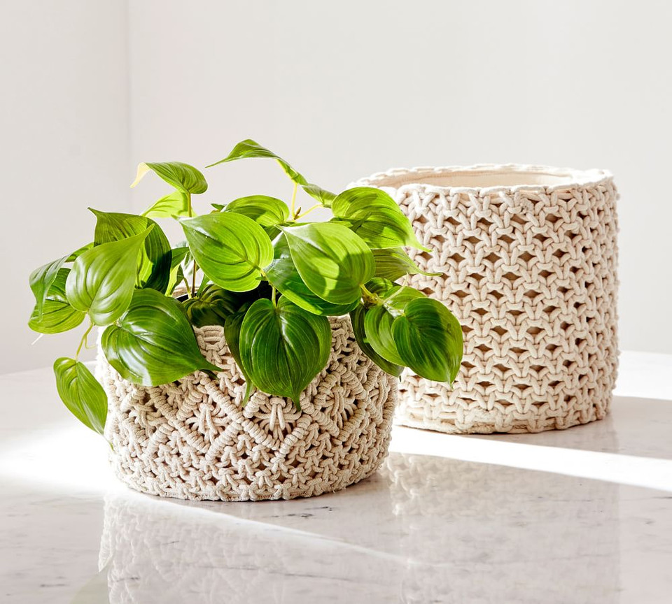 Faux Potted Pothos Houseplant Pottery Barn Canada